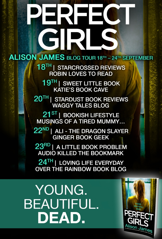 Perfect Girls - Blog Tour
