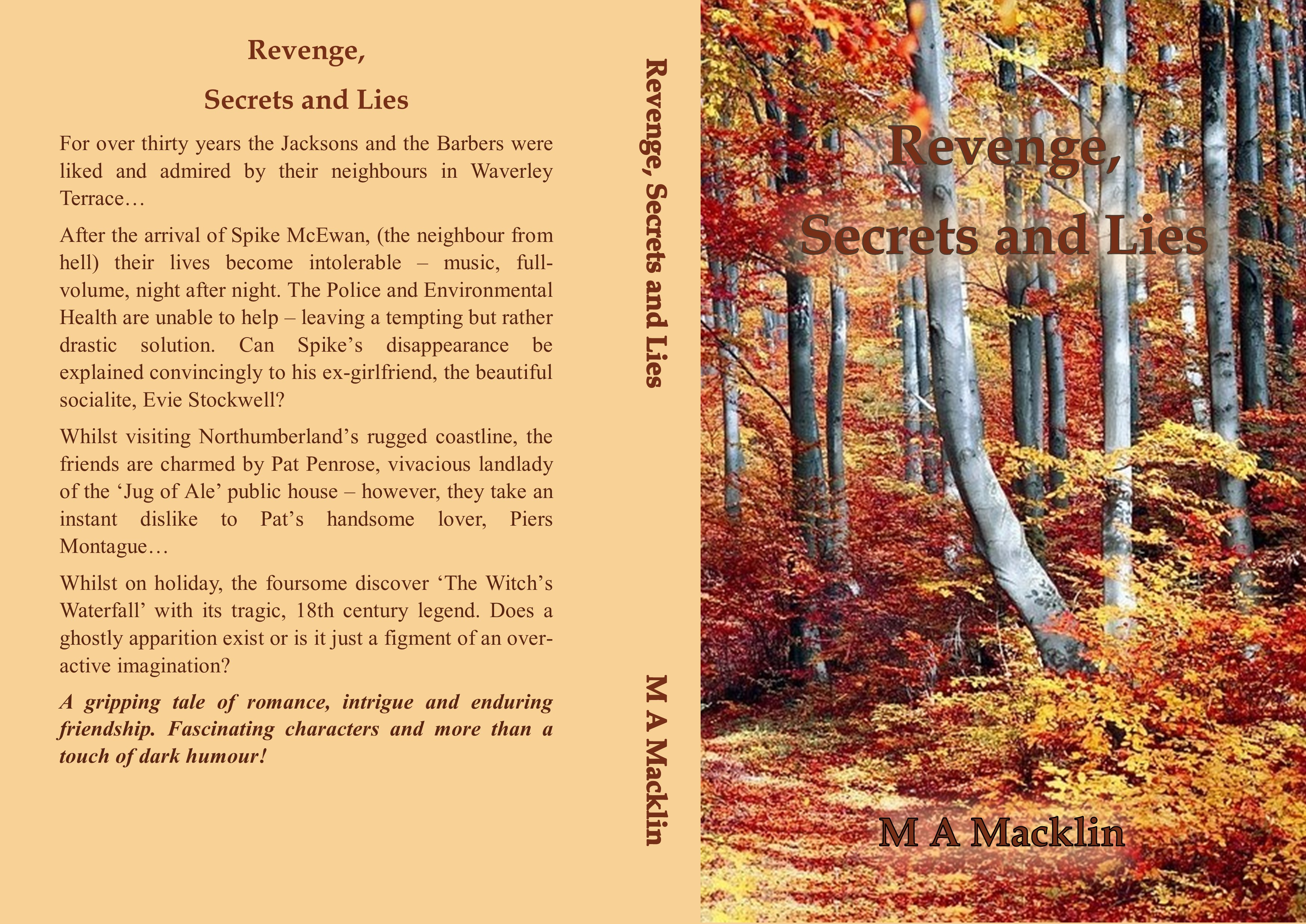 MM COVER IDEA REVENGE 5 with blurb