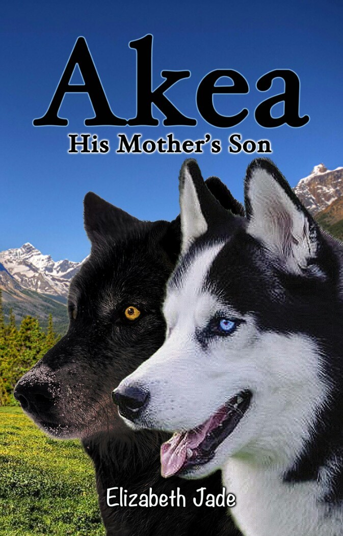 Akea - His Mother's Son (BK2)