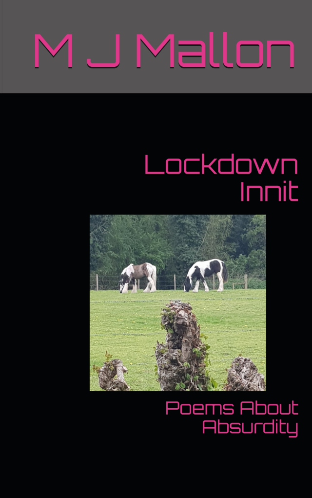 Lockdown Innit Book Cover - kindle png